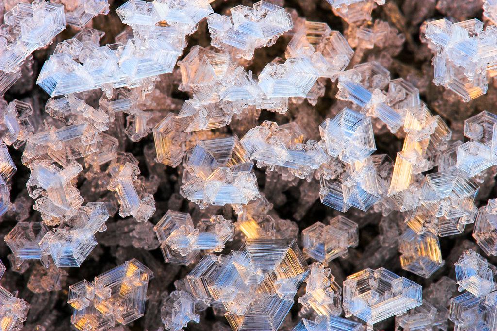 Rijpkristallen